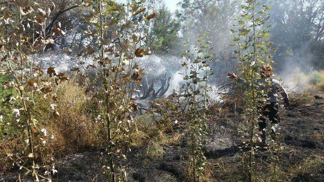 وقوع حریق در مراتع دوراهان از توابع شهرستان بروجن