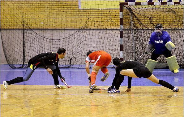 مسابقات اسکیت قهرمانی آسیا، مدال طلا برای تیم ملی مردان و برنز برای تیم ملی زنان