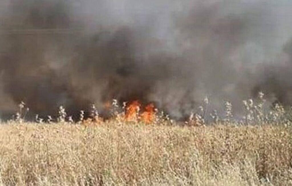 تروریست ها 5 تن گندم سوریه را به آتش کشیدند